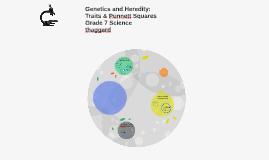 Genetics and Heredity: Traits & Punnett Squares