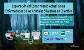 Exploración del Conocimiento Actual de las Enfermedades de los Animales Silvestres en Colombia
