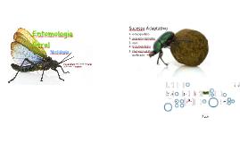 Copy of Entomologia Geral - Morfologia e Fisiologia
