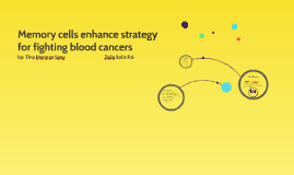 Memory cells enhance strategy for fighting blood cancers