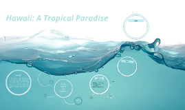 Hawaii: A Tropical Paradise