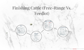 Finishing Cattle (Free-Range Vs. Feedlot)