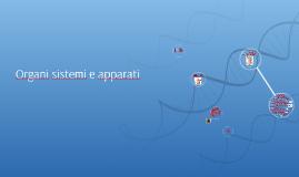 Organi sistemi e apparati