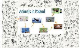 Animals in Poland