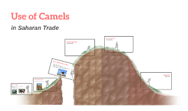 Use of Camels