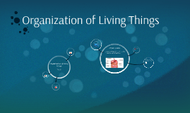 Organization of Living Things