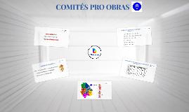 COMITÉS PRO OBRAS