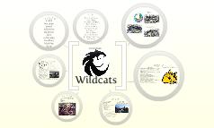 Little Rock Wildcats