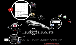 Copy of Jaguar Marketing Plan Presentation