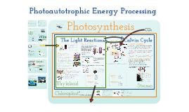 Copy of AP Bio- Energy 2:  Photoautotrophic Nutrition