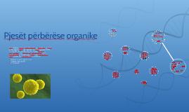 Pjesët përbërëse organike