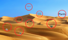 USCHSAPES  Desert Biome Location and abiotic and biotic