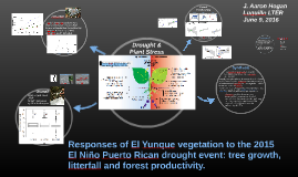 Responses of El Yunque vegetation to the 2015 El Niño Puerto