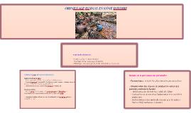 ORPAILLAGE ILLEGAL EN CÔTE D'IVOIRE