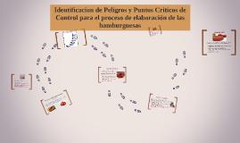 Copy of Identificacion de peligros y puntos criticos de control para