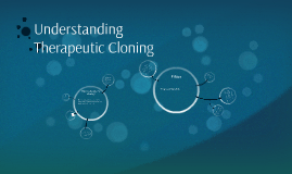 Copy of Understanding Therapeutic Cloning
