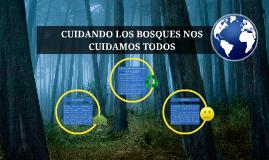 Cuidando los bosques nos cuidamos todos