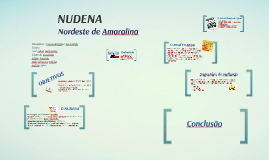 Jornal NUDENA