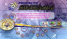 Copy of INFORMATICA WEB