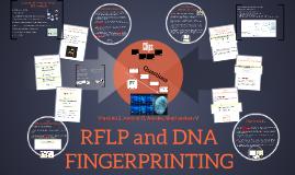 Copy of RFLP and DNA FINGERPRINTING