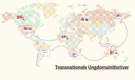 Hvad er et transnationalt ungdomsinitiativ?