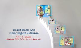 2013 MPLP Training - Digital Evidence