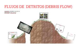 FLUJOS DE  DETRITOS (DEBRIS FLOW)