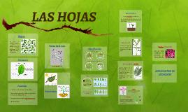 Copy of Las hojas.
