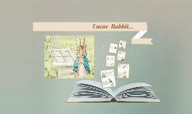 Lucas  Rabbit...