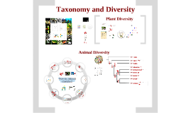 Taxonomy and Diversity