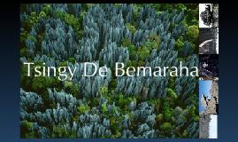 The Tsingy