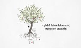 Copy of Capítulo 3: Sistemas de información, organizaciones y estrategia