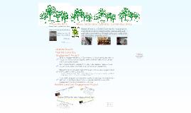 Ubuntu Green HLEP for CRC