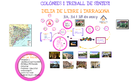 COLÒNIES DELTA DE L'EBRE - TARRAGONA 2015