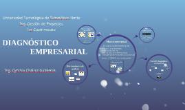 Diagnóstico empresarial. Marco conceptual