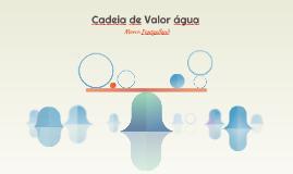 Cadeia de Valor água