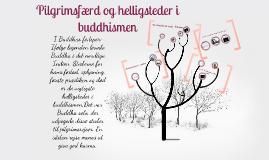Pilgrimsfærd og helligsteder i buddhismen