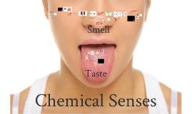 Lecture 11: Chemical senses