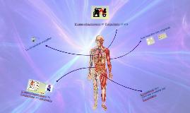 Fonctionnement du corps humain