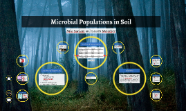 Microbial Populations in Soil
