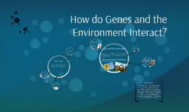How do Genes and the Environment Interact?