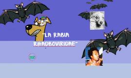 """Copy of """"LA RABIA"""""""