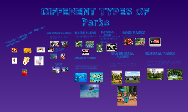 DIFFERENT TYPES OF PARKS