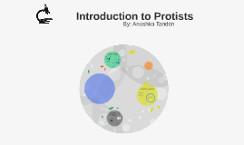 Introduction to Protists