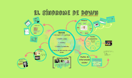 Copy of Copy of El Sindrome de Down