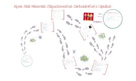 Copy of Biologia - Noções de metabolismo: Água, Sais minerais, oligoelementos, Carboidratos, Lipídios e Proteínas