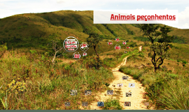 Desbravadores - Especialidade de Animais peçonhentos - EN 069