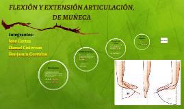 FLEXIÓN Y EXTENSIÓN ARTICULACIÓN, DE MUÑECA