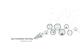 Sea Cucumber Farming
