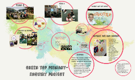 Green top primary- enquiry